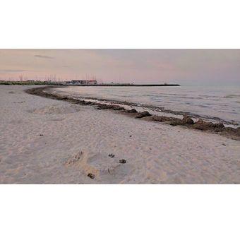 Grenaa lystbådehavn