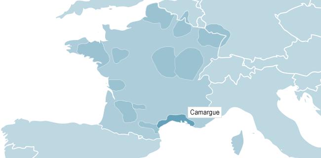 Karta över Camargue